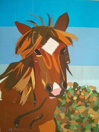 Equus behrus